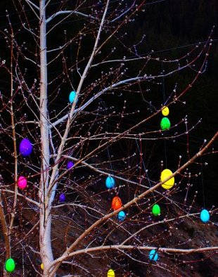 Easter Tree in Park