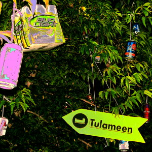 The Magic Tree on Tulameen Days weekend